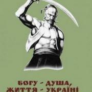 Українські козаки